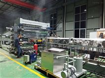 PE防水板材生產設備(優質)